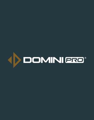 Logo Domini Pro